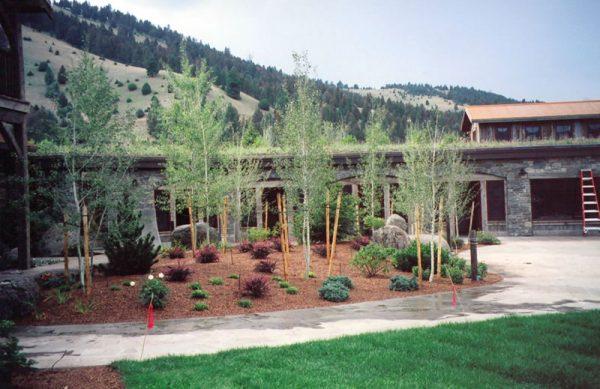 Southwest Montana Landscaping, Pony live roof