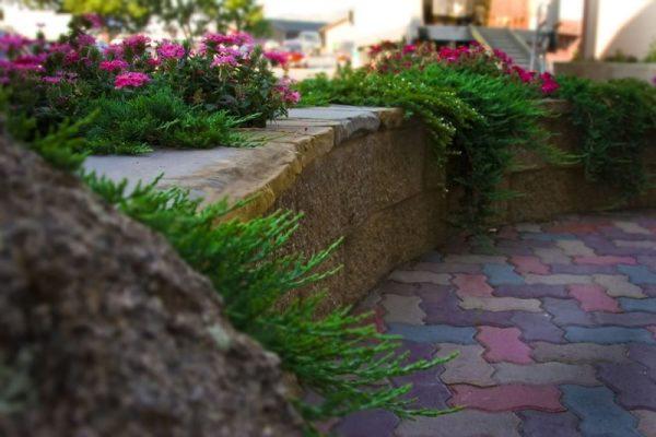 Butte Commercial Landscape Maintenance