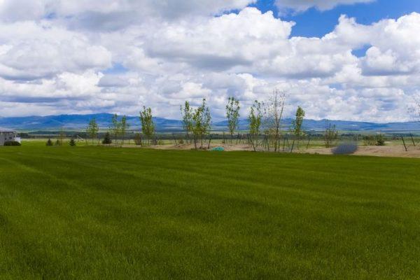 Montana Landscape Irrigation Maintenance